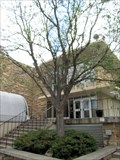 Image for Dr. John H. Venable Dedicated Tree - Fort Collins, CO