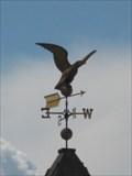 Image for Eagle - Burlington, Vermont