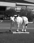 Image for Art C Bull-Lakewood Bank, Baxter, MN