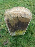 Image for Horton Parish Bench mark 3 - Milestone