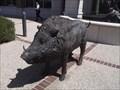 Image for Razorback - Lindsey Building - Fayetteville AR