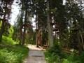 Image for Hochseilgarten Fulpmes, Tirol, Austria