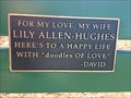 Image for Lily Allen-Hughes - San Francisco, California