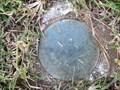 Image for Permanent Survey Mark 51138, Shepherd Street, Koongal