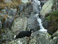 Image for Ash Gill,Lake District .