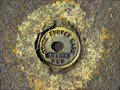 Image for Survey Mark 60219, Lilyfield, NSW.