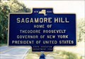 Image for Sagamore Hill