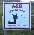 Image for A & R Alpaca Farm - Williamsport, OH