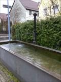 Image for Gusseisener Brunnen / Cast-iron Fountain, Ergenzingen, Germany, BW