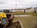 Image for Oostvoornsemeer -Stormvogel
