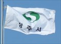 Image for City Flag  -  Sangju (상주시), Korea