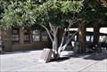 Image for Historical Marker - San Carlos Station ~ San Carlos, California