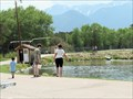 Image for Feed the Trout - Chalk Cliffs Fish Hatchery - Nathrop, Colorado, USA