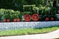 Image for Train Topiary