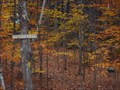 Image for Sargent Town Forest Nature Trail  -  Pittsfield, NH