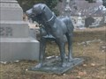 Image for Dog in Cemetery - Evansville, IN