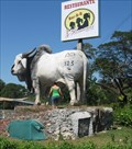 Image for Giant Bull at 3 Hermanas Restaurante, Costa Rica