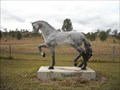 Image for Humes Horse Breeding & Spelling, Yimbun, Queensland