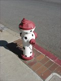 Image for Cow painted Hydrant - San Jose, CA