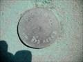 Image for SCVWD BM 273 RESET
