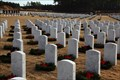 Image for Ft. Jackson National Cemetery