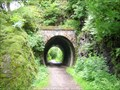 Image for Cockermouth Keswick Penrith Railway (CKPR) Wescoe Tunnel Greta Gorge