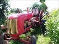 Image for Vieux tracteurs à Ste-Thérèse