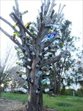 Image for Bottle tree - San Marcos, TX