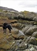 Image for Hutton's Unconformity - Lochranza, Isle of Arran, UK
