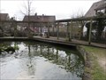 Image for Feeding the trouts - Pegnitz, Bayern, Germany