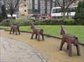 Image for Donkeys in the city park – Bradford, UK