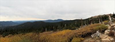 View of Bristlecone Pine
