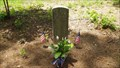 Image for Captain James Gaines ~ Groseclose Cemetery ~ Kingsport, Tennessee.