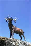 Image for Stag — Mossburn, New Zealand