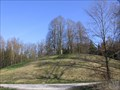 Image for Hohmichele Celtic Burial Mound
