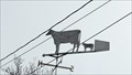 Image for Jersey Weathervane - Grand Forks, BC