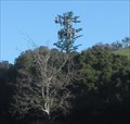 Image for I-680 Cell Tower - Alameda County, CA