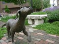 Image for Lentil's dog - Hamilton, Ohio