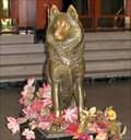 Image for Northeastern University's Mascot - Boston, MA