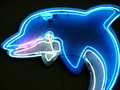 Image for Dolphin - Artistic Neon - Kissimmee, Florida, USA.