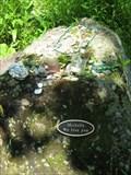 Image for Michelle Gardner-Quinn - Richmond, Vermont