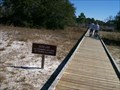 Image for Gator Trail in St. Andrews State Park, Florida