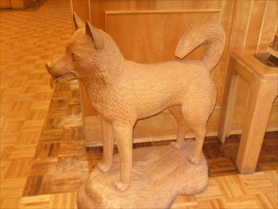 Magnifique Husky sculpté dans le bois placé a l'entré près de la réception.Husky beautiful carved wood placed in the entrance near the reception