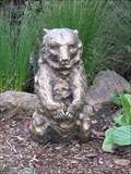 Image for Sitting Bear - San Francisco, CA