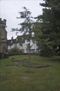 Image for Dr Tim Maurice - Marlborough, England