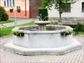Image for Town Fountain - Vilemov, Czech Republic