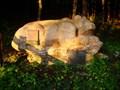 Image for Bear at Bärenrast - Schwaz, Tirol, Austria