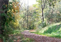 Image for Five Star Trail - Depot Street Trail Access - Youngwood, Pennsylvania