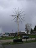 Image for Fireworks Tree - Hawkestone, Ontario, Canada