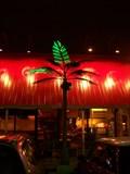 Image for Palmiers électriques du Restaurant Le Milsa - Laval